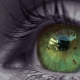 Jaime Olhos Verdes