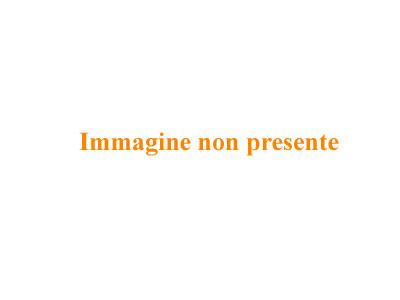 Imagem/foto